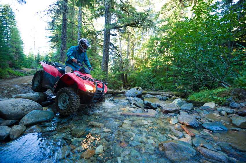 ATV or quad adventure in the forest